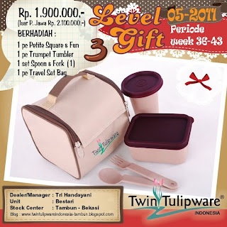 Level Gift Tulipware | September Oktober 2011