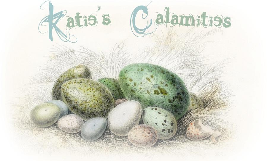 Katie's Calamities