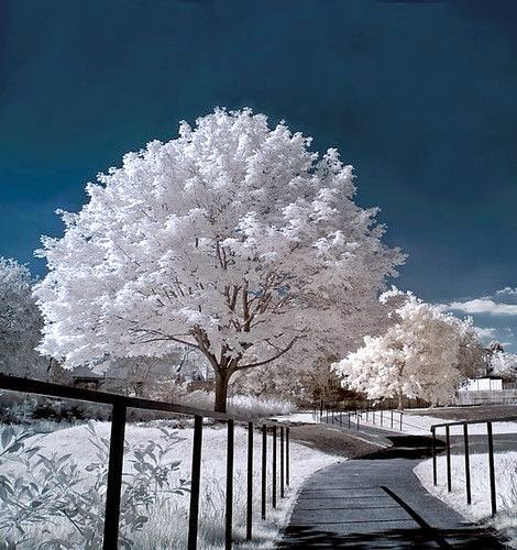 Absolutely Amazing Winter Landscape Photography