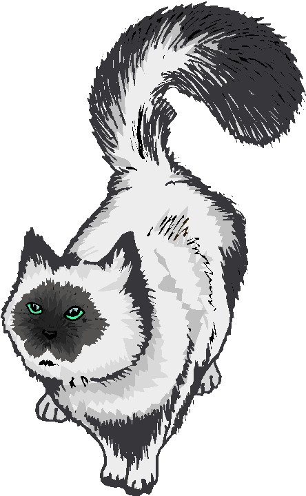 Cute Persian Cat Free Clipart