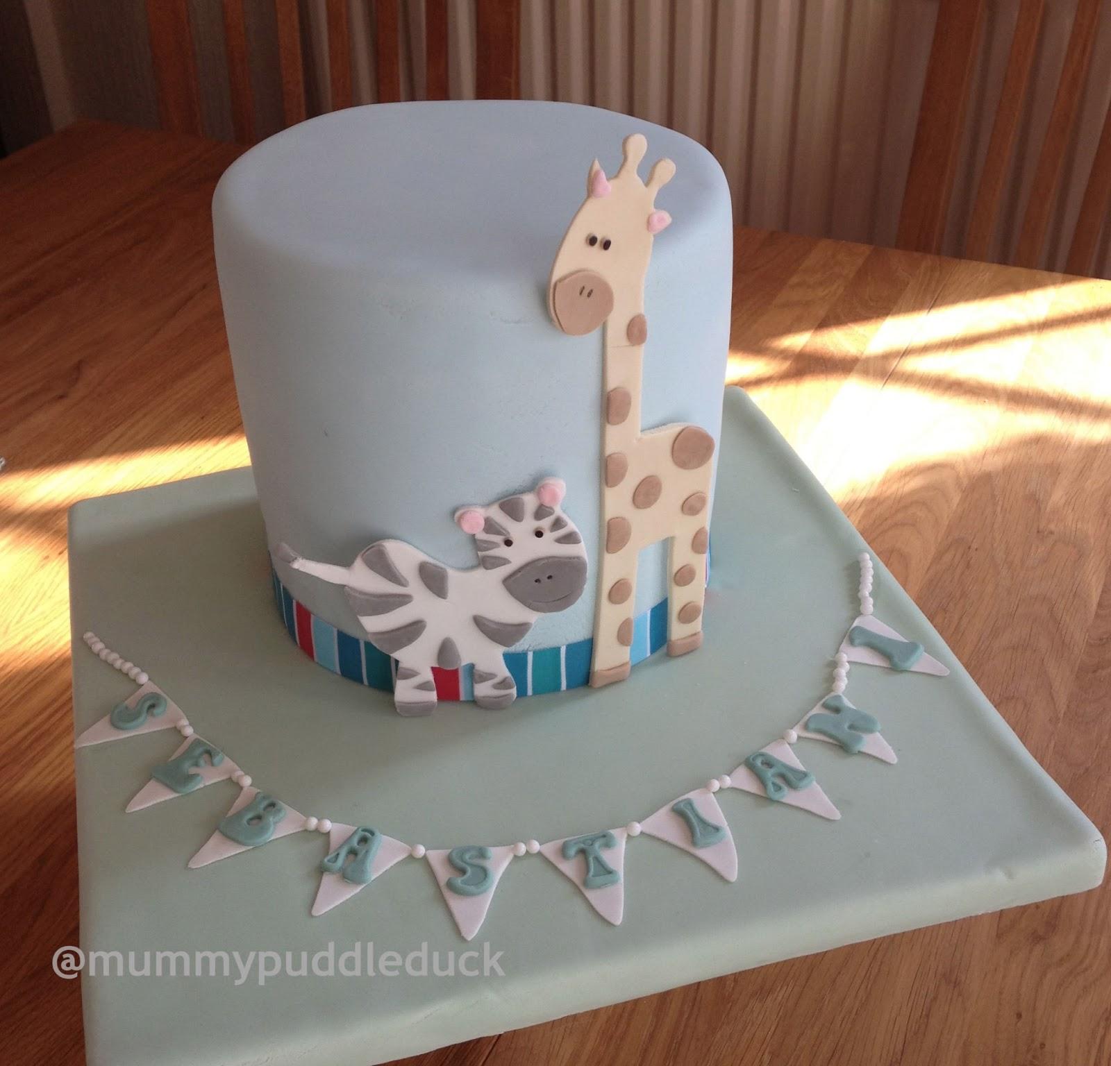 Mummypuddleduck Babys First Cake