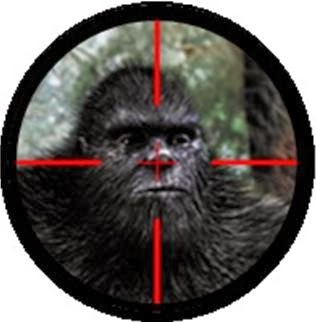 http://www.spike.com/articles/xpekll/bigfoot-bounty-the-10-million-dollar-bigfoot-bounty-is-on