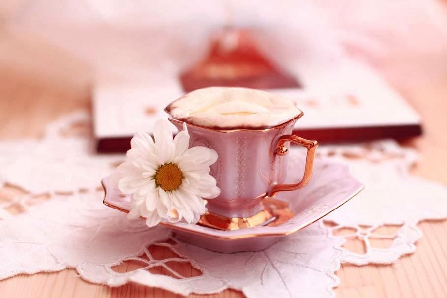 allfreshwallpaper  lovely and beautiful good morning