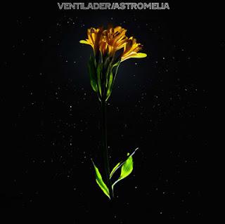 Ventilader – Astromelia 2011