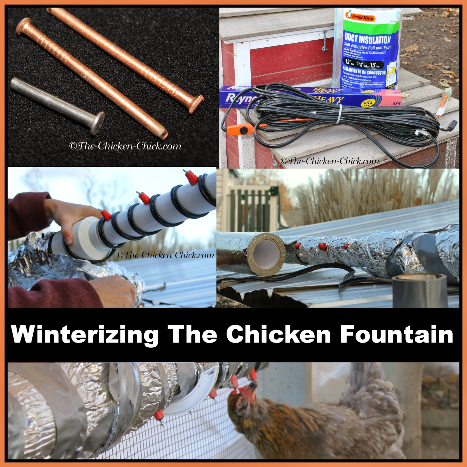 Winterizing The Chicken Fountain instructions