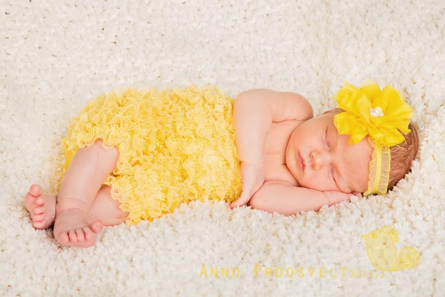 newborn-beebi-pildistamine