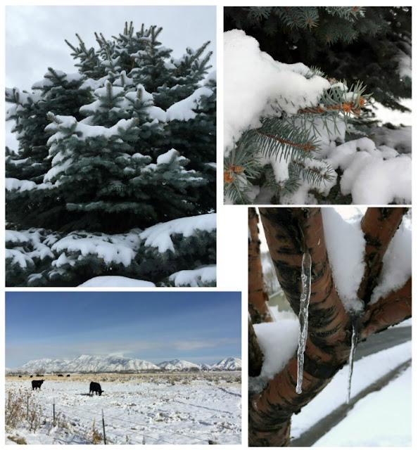 winter snow photographs mountains utah nature beauty