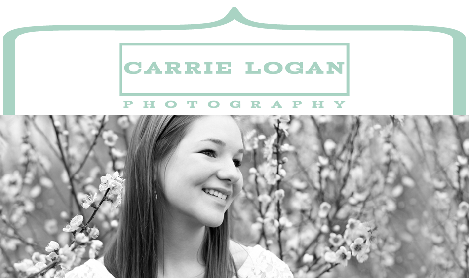 Carrie Logan Blog