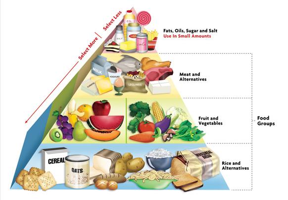 Home Economics Blog Food Pyramid