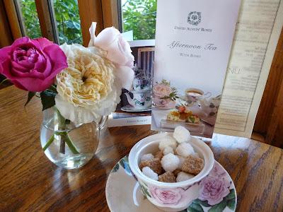 Tearoom David Austin Roses