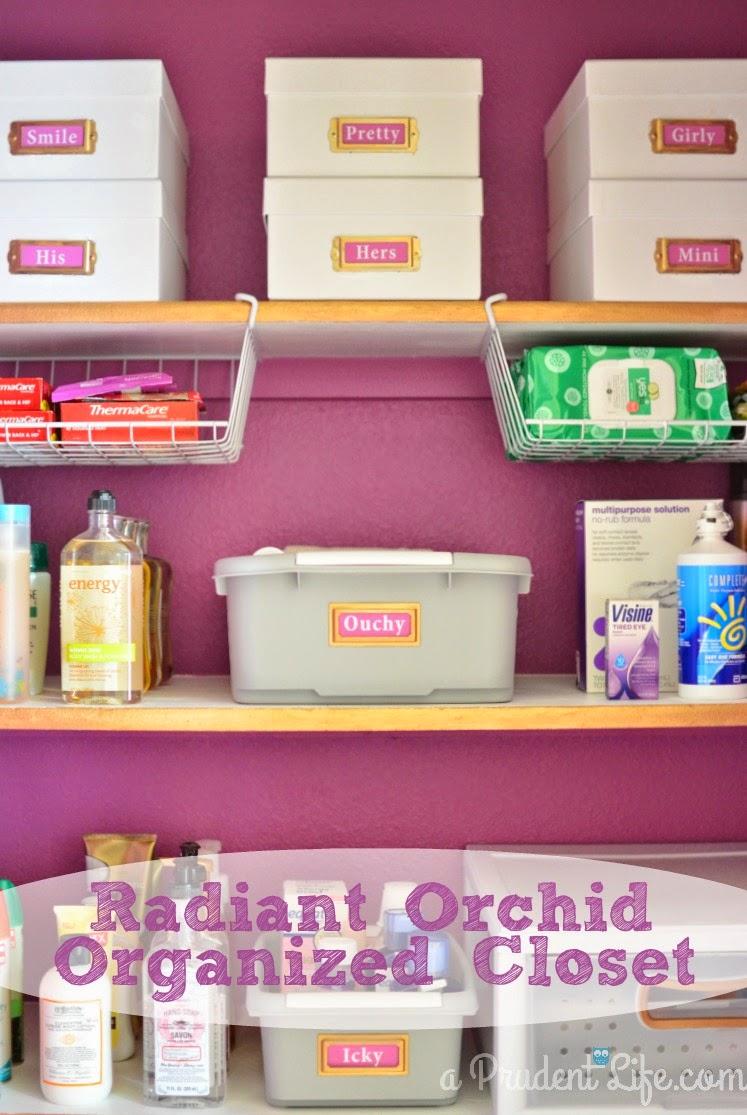radant Orchid Organized closet
