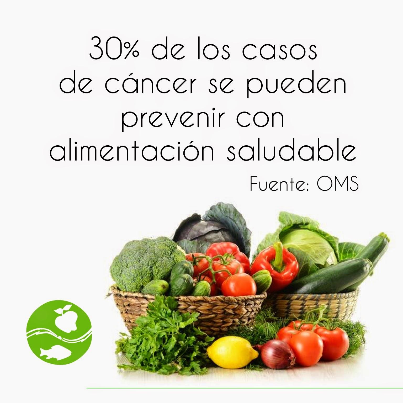 Cocina segura alimentaci n antes durante y despu s del c ncer - Alimentos que evitan el cancer ...