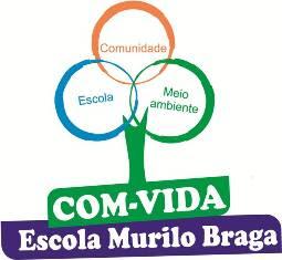 COM-VIDA (Comissão de Meio Ambiente e Qualidade de Vida)