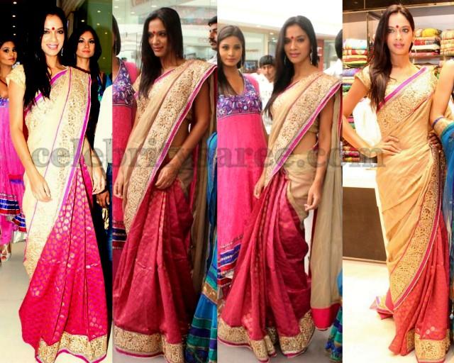 Model in Kalanikethan Saree