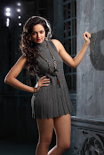 Shanvi latest Portfolio Photos-thumbnail-6