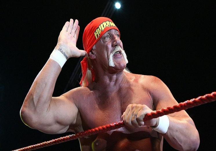 Hulk Hogan Hd Free Wallpapers