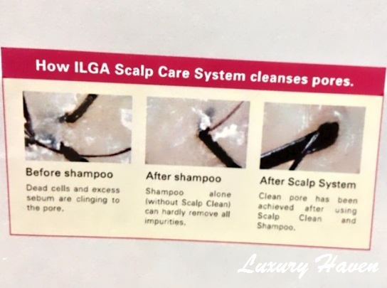 jass hair design ilga scalp care system