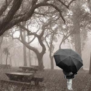 Koleksi Aneka Puisi Kenangan Rintik Hujan