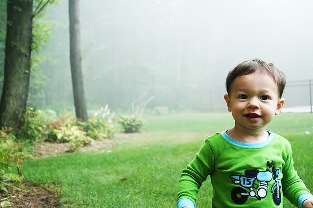 365 baby photos