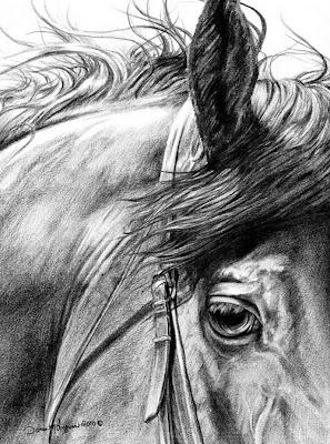 caballos-lapiz