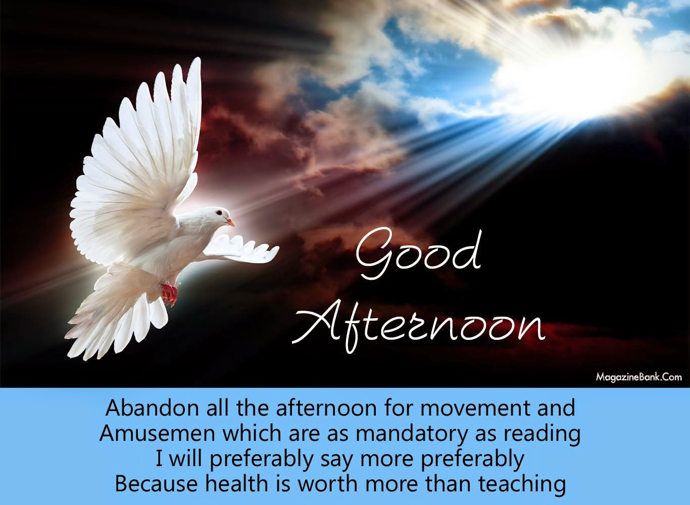 Good Afternoon Quotes and Images  Amazing Photo Stock
