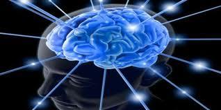 Cara Meningkatkan Daya Ingat Otak Kita