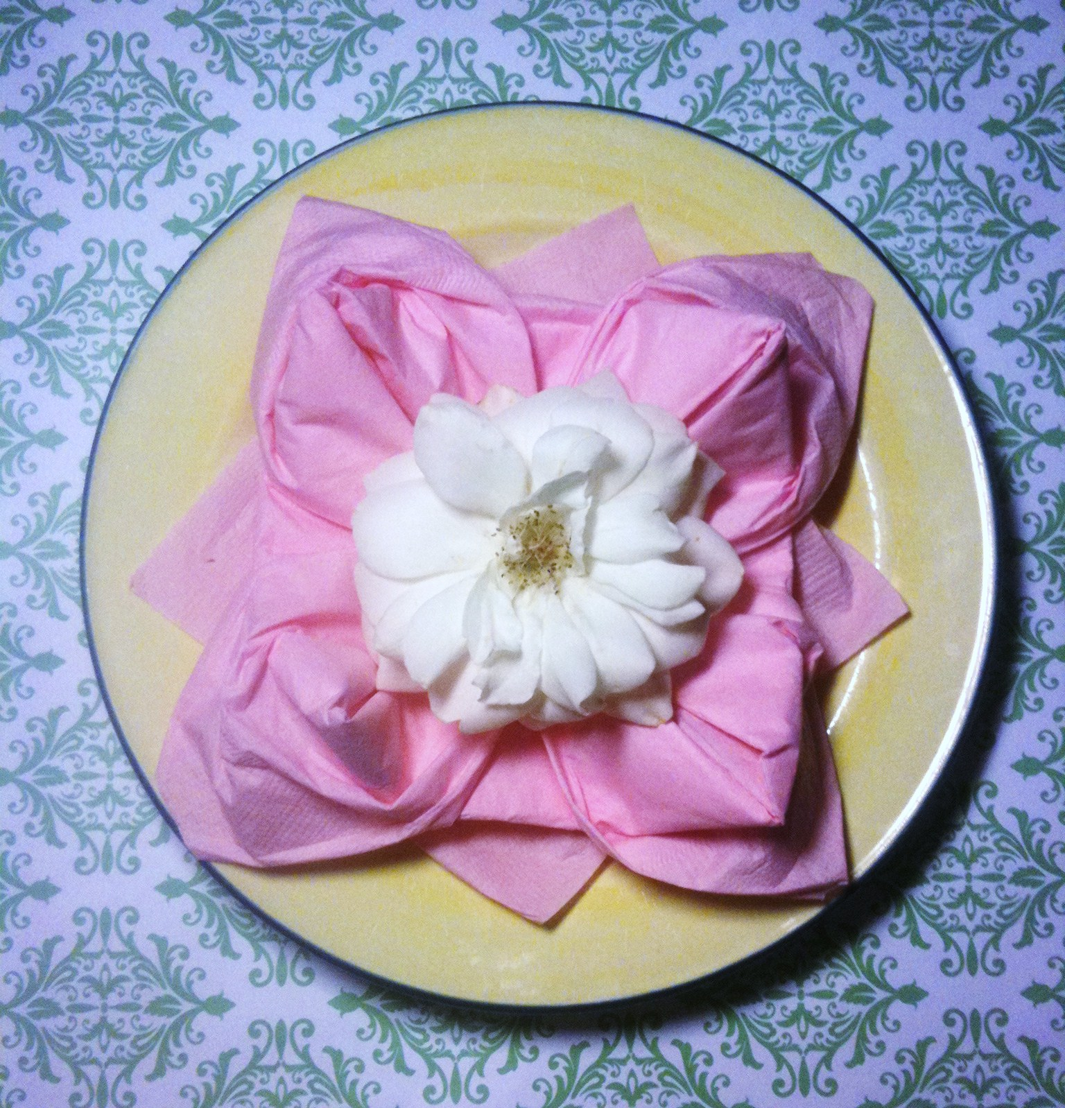 Lotus Flower Napkin Fold  Daisy Celebrates!