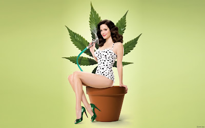 Mary Louise Parker Wallpapers