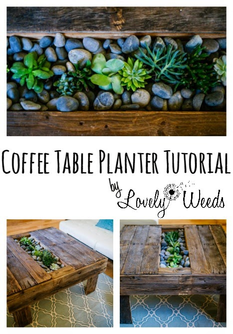 Build your own coffee table with a space for flowers or succulents