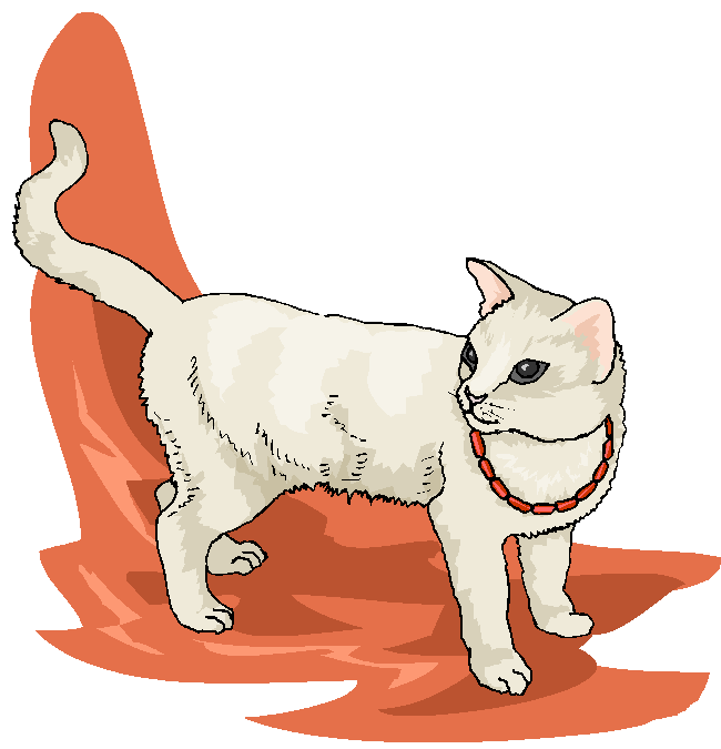 Funny White Cat Walking Free Animal Clipart