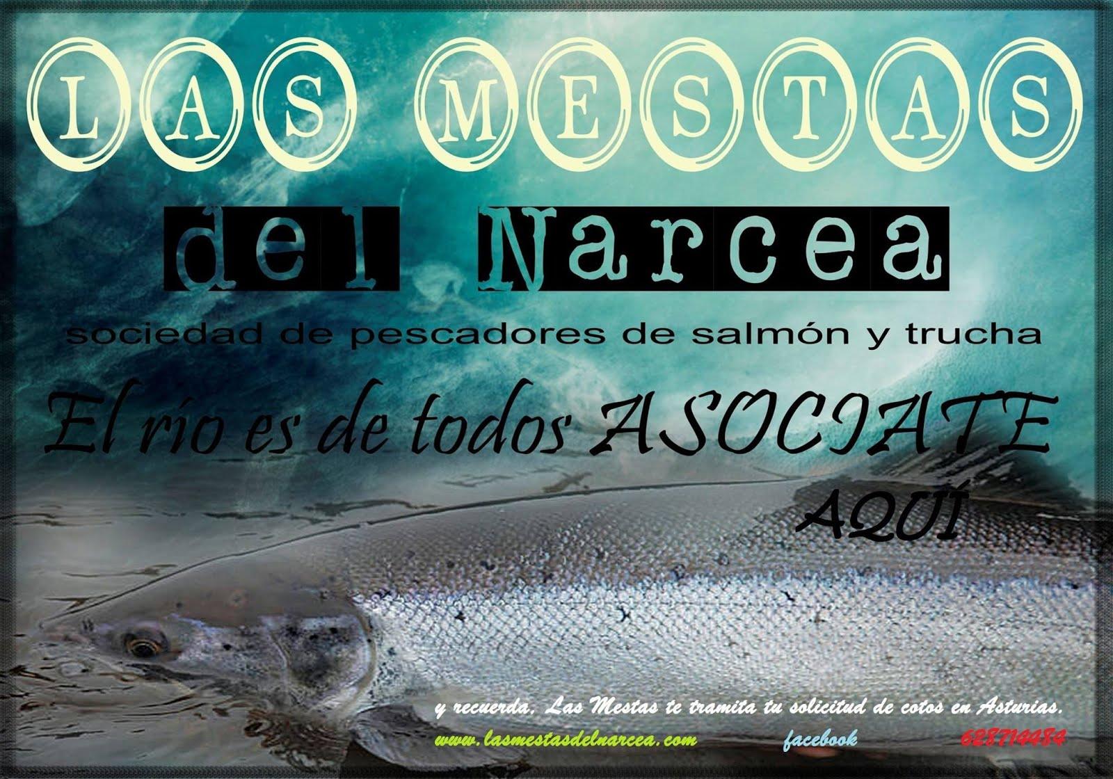 Sociedad de Pescadores Las Mestas del Narcea