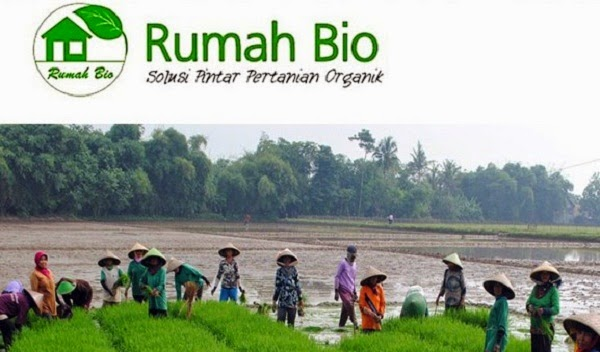 PT RUMAH BIO INDONESIA : SUPPORT WORKER DAN SALES MARKETING AREA - ACEH DAN MEDAN, SUMATERA