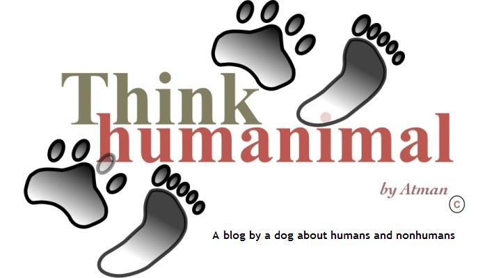 Think Humanimal
