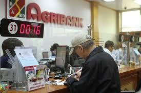 Vay tín chấp Agribank tại Hà Nội