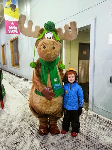 Chill Factore Mini Moose Land