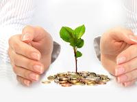 5 Peluang bisnis yang memiliki profit paling tinggi_business only