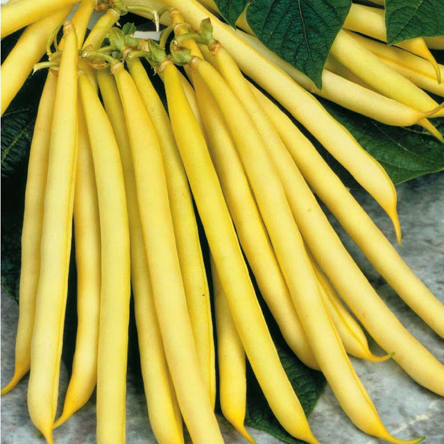 how to cook yellow pole beans