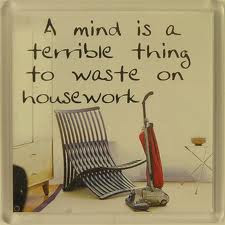 A mind is a terrible thing to waste on housework
