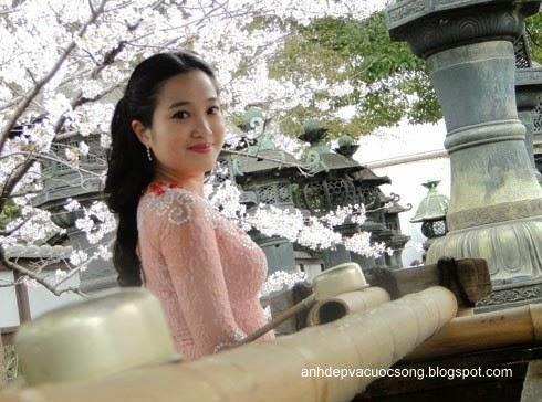 Mc Hồng Phượng ngẩn ngơ trước hoa anh đào Nhật Bản 5