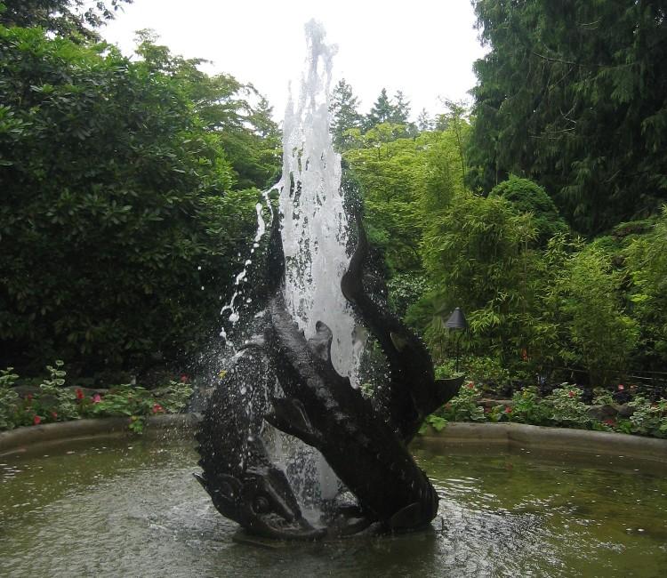 Victoria Butchart Garden