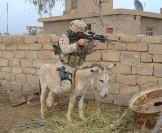 Sniper utiliza burro