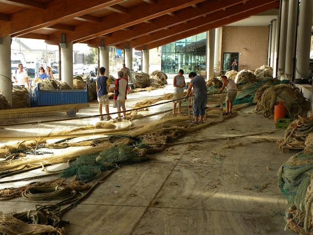 Civitavecchia fishers harbour