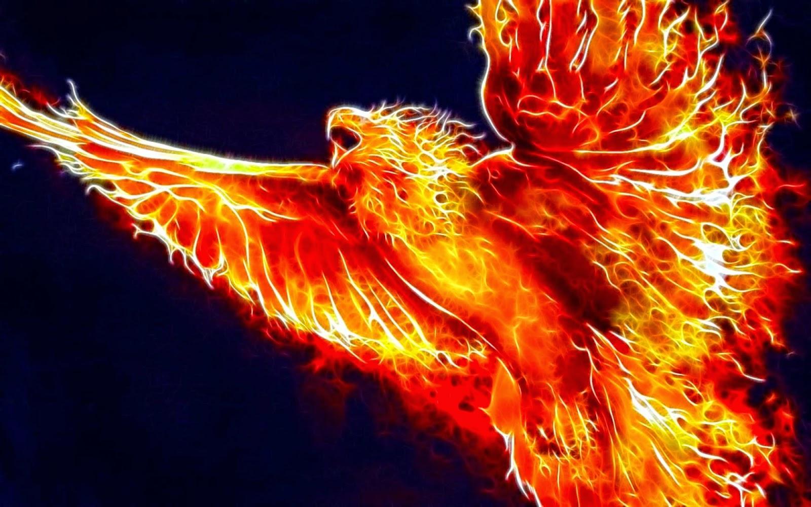 Violetas el mito del ave fenix - Fenix bird hd images ...
