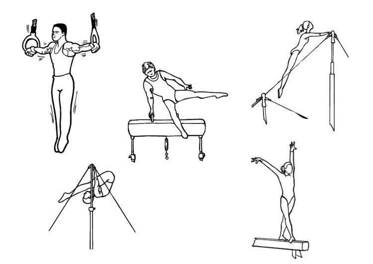 gimnacia masculina: