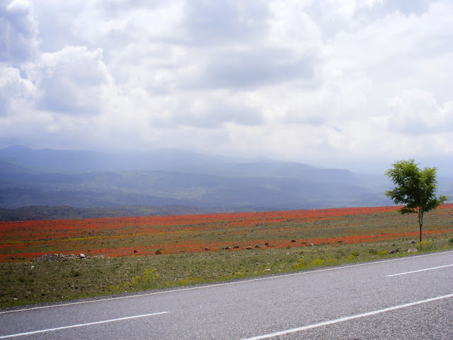 Iğdır Scenery, Eastern Turkey