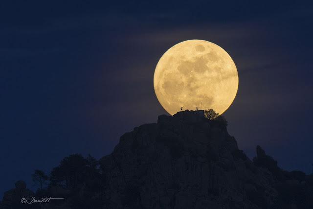 Tìm kiếm chú Cuội trên Mặt Trăng. Tác giả hình : Dani Caxete.