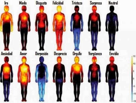 Emociones corporales