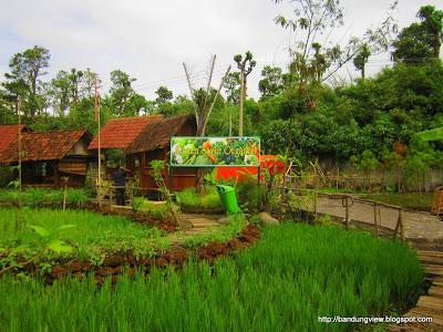 sayur organik Floating Market Lembang