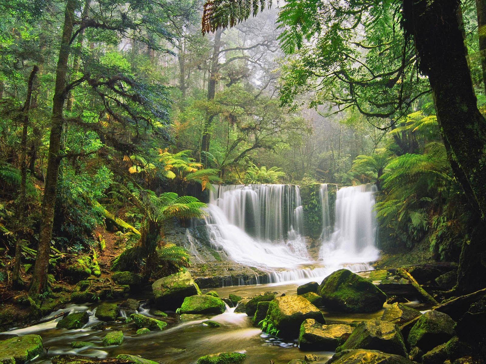Waterfalls Mount Field National Park, Australia