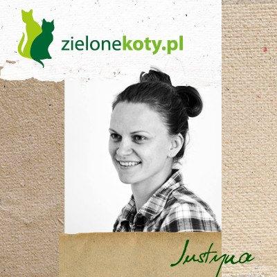 Projektuję dla sklepu Zielone Koty